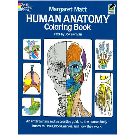 Human Anatomy Coloring Book - Margaret Matt | Oak Meadow Bookstore
